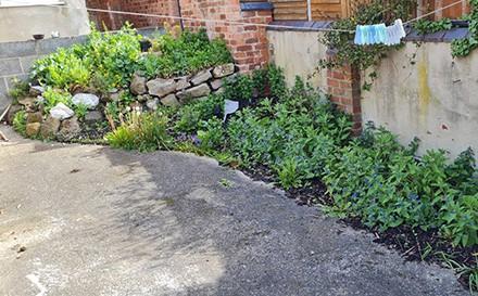 Wild-Flowers-Derby-Property-Rental-Blue-i-Properties
